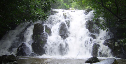 Beautiful cascade / Waterfall in mauritius island