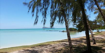 Blur Turquoise Beach in Mauritius